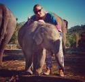 Baby elephant !!!